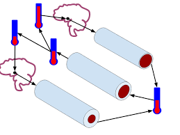 File:Negative Feedback Loop Diagram for Human Body Temperature ...
